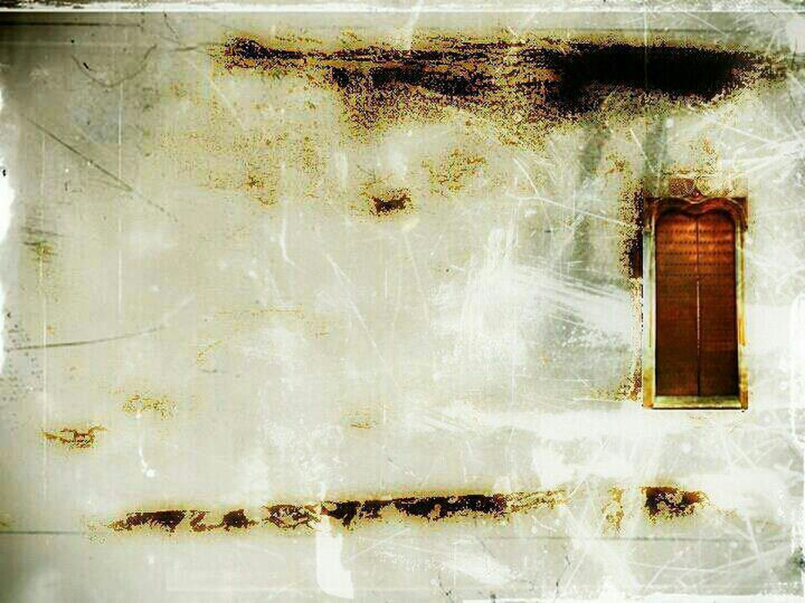 window, architecture, built structure, wall - building feature, building exterior, full frame, glass - material, wall, weathered, reflection, backgrounds, water, damaged, deterioration, close-up, old, no people, day, outdoors, house