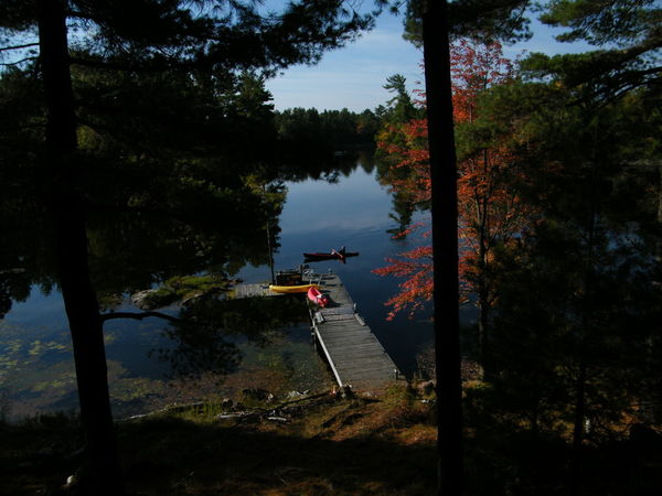 Quiet day Fall Colors Beauty In Nature Boats And Water Kyaking Outdoors Tree View From Above Water