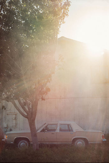 Grand Marquis Brightly Lit Car Show Outdoors Parked Scenics Sunbeam Sunny Sunrays Transportation Vintage Vintage Cars Vintage Photo