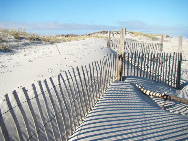 Island Beach State Park in New Jersey is a lovely state park where folks go to fish, sunbathe,walk nature trails, and bird watch. Here are dunes with wooden fences used to keep sand in place. Absence Beautiful Coastal Carolina Day Dunes Of Merzouga Empty Fence Footprints In The Snow Ibsproblems Island Beach State Park Journey Leading Narrow New Jersey Outdoors Sand Seaside Park Shadow Shore Summer The Way Forward Wood Wooden