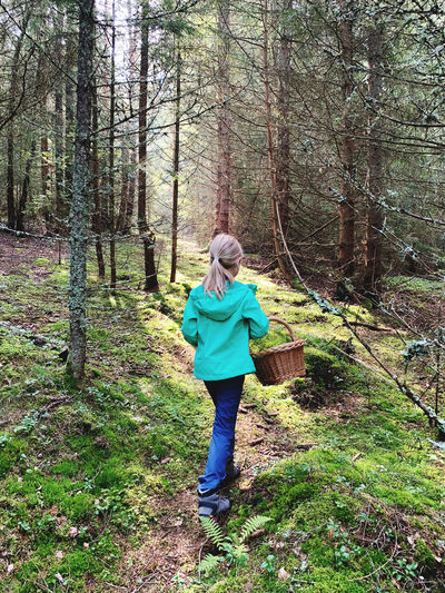 Rear view of girl carrying wicker basket while walking in forest
