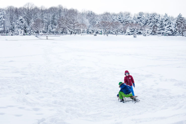 Childhood spent in winter wanderland Children Child Childhood Winter Snow Warm Clothing Tree Plant Cold Temperature Nature Day Outdoors Fun Fun Times Holiday Playing Park Public Park Tree Trees Snow Covered White Boy Boys Cold