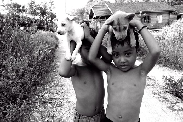 Central kalimantan, indonesia 2013 People Documentary Streetphotography Streetphoto_bw Portrait INDONESIA Kalimantan Fujix10 Blackandwhite Puppies