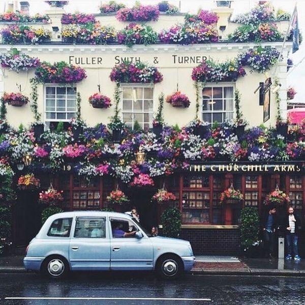 Street Flowers Retro Car Blue