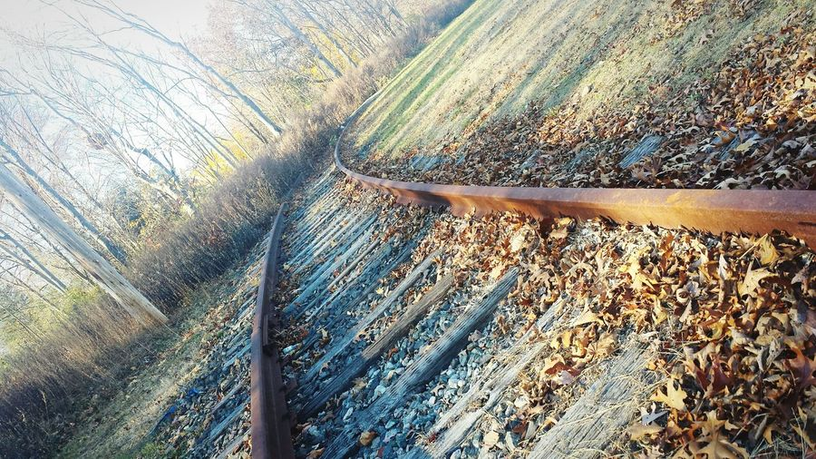 The tracks that no longer lead to anywhere- When nature takes over. Lines USA United States New Jersey Point Of View EyeEm New Jersey The Beauty Of Fall Nature Fall Colors Mystery Railroad Train Tracks Railroad Tracks
