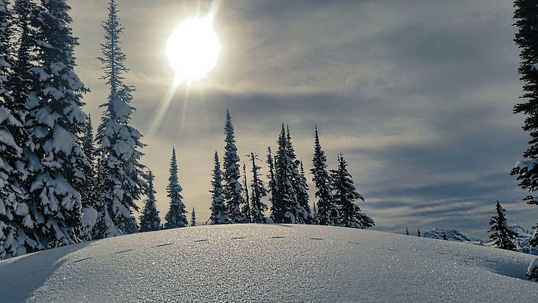 My favorite spot on the whole mountain Revelstokemountainresort Sky And Clouds Mothernature Freeskiing Treesking Volkl Ski Mountain Life EyeEm Gallery Wintertime Salomon
