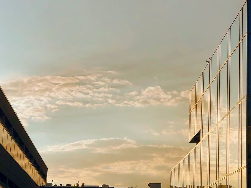 Sky gazing Sunrise Sky Cloud - Sky Architecture Built Structure Building Exterior Nature No People Low Angle View Building City Outdoors Day Sunlight Office Building Exterior Tall - High Modern Office Beauty In Nature