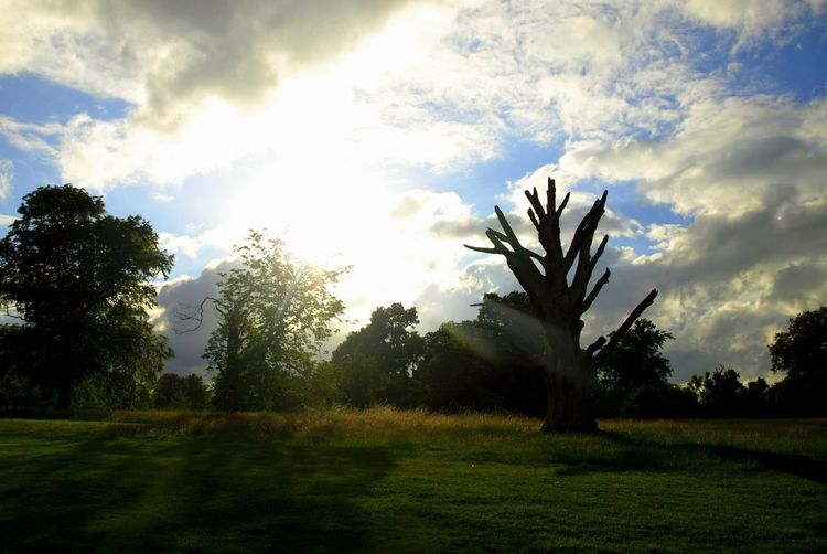 Osterleypark