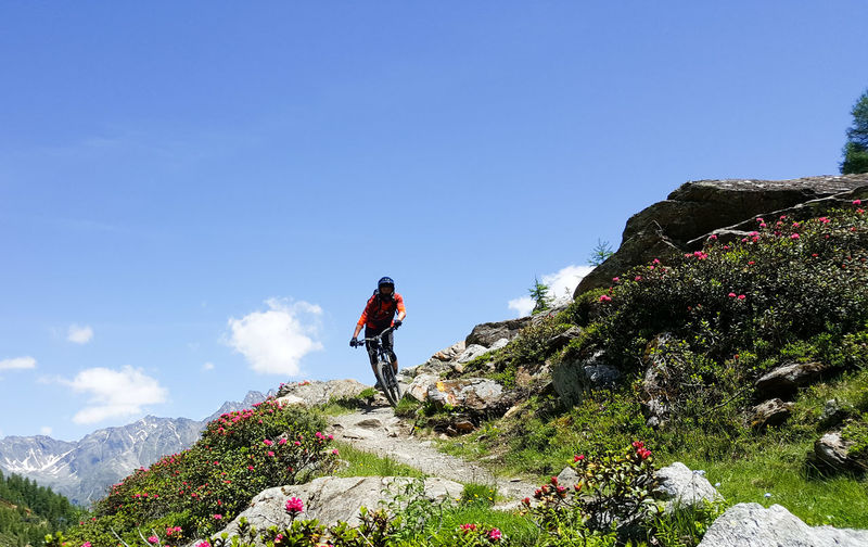 Low Angle View Of Mid Adult Man Riding Bicycle On Hill Against Blue Sky