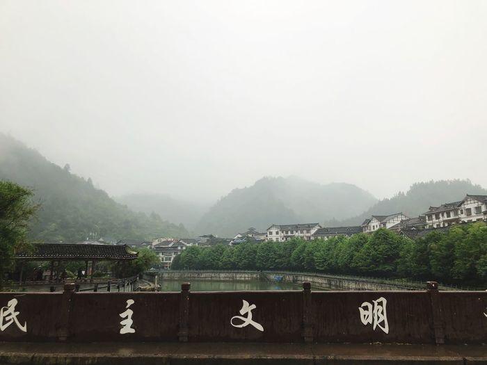 雷山 Plant Nature