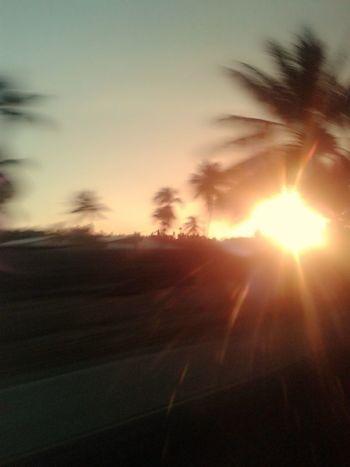 Beautifulday Sunshine Sunset Taking Photos