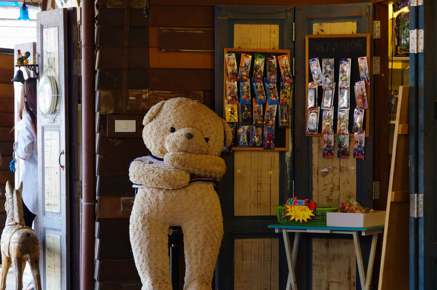 Plearnwan Ajar Bookshelf Childhood Day Hua Hin Indoors  No People Old Times Pentax Pentax K-3 Ll Plearnwan Shelf Stuffed Toy Teddy Bear Thailand Travel Vintage