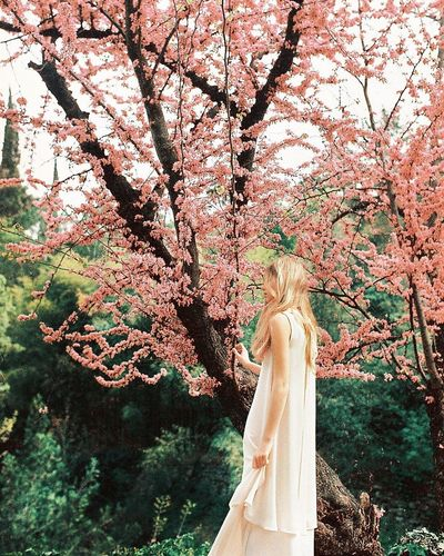 Plant Tree Growth Day Nature Real People Branch One Person Low Angle View Human Body Part Outdoors Freshness Sunlight Beauty In Nature Hand Women Body Part Textile