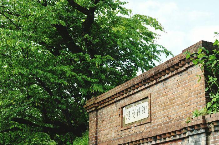 南禅寺へ続く道 Nikon_photography Kyoto Japan Scenery 新緑