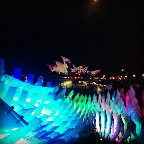 Starry Eyed Surprise Vividsydney Light Festival Sydney australia
