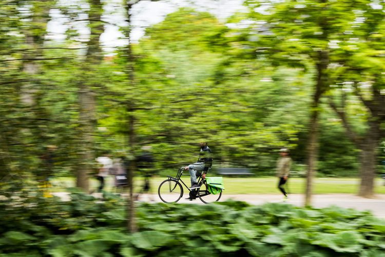The cyclist Bicycle Cycling Mode Of Transport Motion Motion Blur Park People Selective Focus The Street Photographer - 2016 EyeEm Awards Transportation Trees Need For Speed The Magic Mission People And Places CyclingUnites