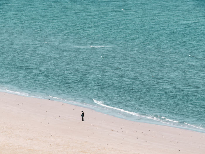 High angle view of man standing at sea shore