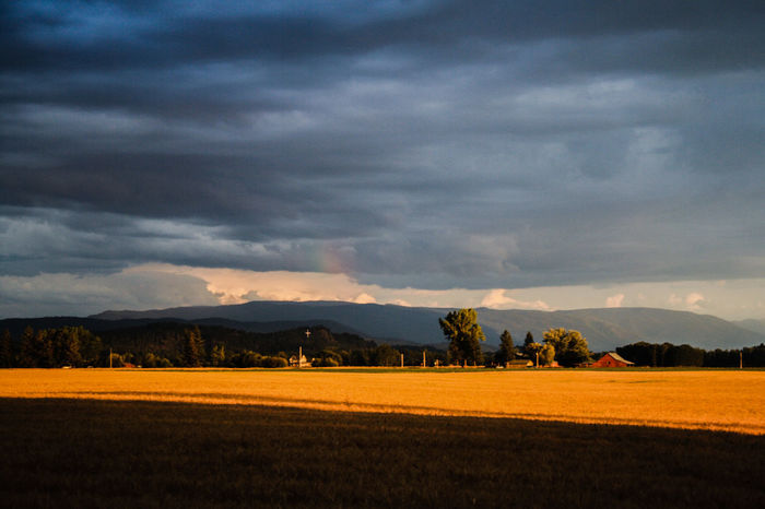 Clouds And Sky Country Living Countryside Farmland Montanamoment Nature No People Outdoors River View Sky Sky And Clouds Sunset #sun #clouds #skylovers #sky #nature #beautifulinnature #naturalbeauty #photography #landscape Sunset_collection Tranquility Tree Trunk Trees Water Reflections