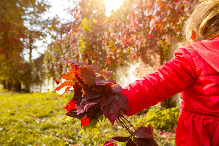 Low angle view of girl with autumn leaves
