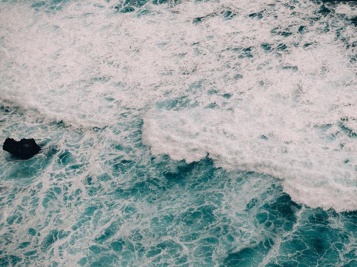 Sea Aquatic