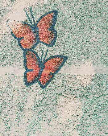 Baterfly Street Art/Graffiti