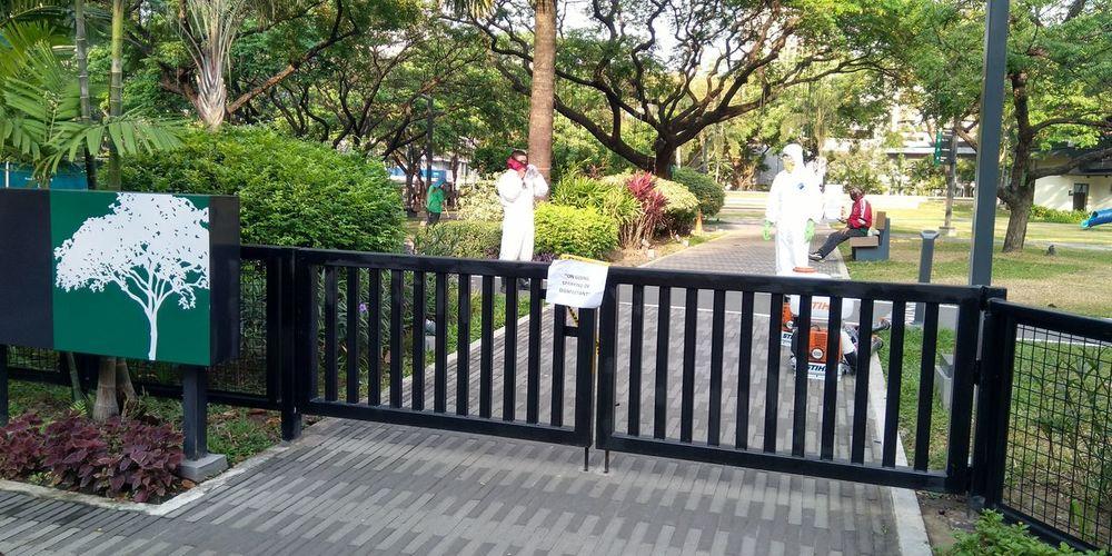 People on footpath in park