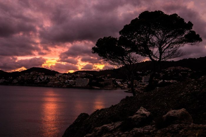 Beauty In Nature Burning Sky Burning Sky Sunset Landscape Mallorca Mountain Nature No People Outdoors Peguera Scenics Sky Sunset Tranquility Tree