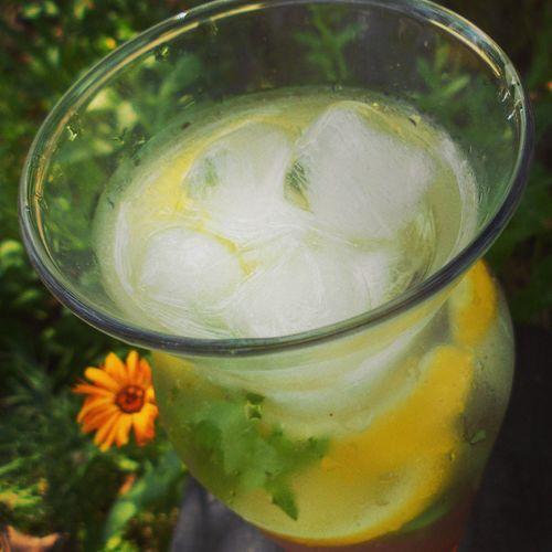 Sweet Tea Juice Chilled Drink Iced Tea Summer