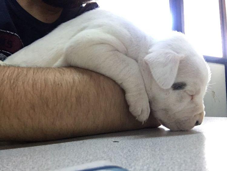 Oyundan yorulunca hemen uykuya geçilir tabi😉😉