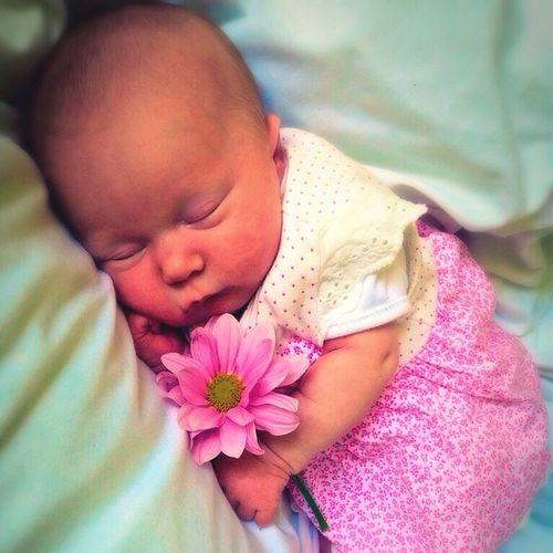 Babyphotos Babygirl Babyphotography Portraits Photography Baby Photo  Pink Flower Babyphotoshoot
