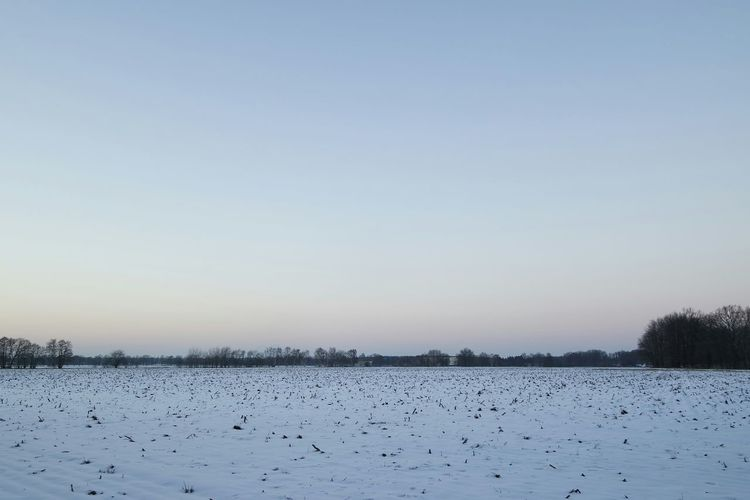 Nature No People Landscape Outdoors Beauty In Nature Day Rural Scene Clear Sky Blue Nature Frozen Nature Reserve Cold Temperature