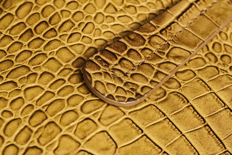 Handle of genuine leather handbag, genuine leather with embossed under the skin of reptile. Concept of shopping, manufacturing Textured  Backgrounds Pattern Close-up Brown No People Natural Pattern Animal Skin Macro Reptile Design Leather Handbag  Handle Leather Genuine Embossed Skin Reptile Manufacturing Shopping Stich Stitch Fashion Stitching