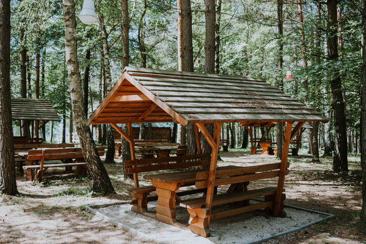 Empty chairs and table against trees in forest