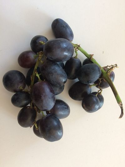 Food And Drink Fruit Healthy Eating Food Freshness Grape Wellbeing Close-up No People Plant Growth Bunch Ripe Nature Still Life Day Berry Fruit Red Grape Indoors  Hanging Grapes 🍇 Grapes Darkgrape DUNKELTRAUBEN Trauben