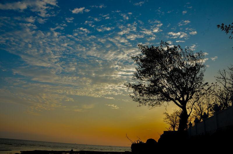 Silohuet Sky