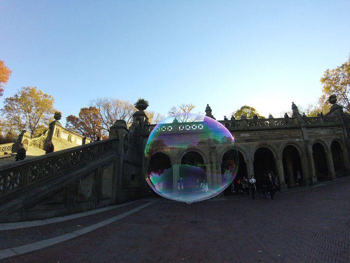 Bubble at