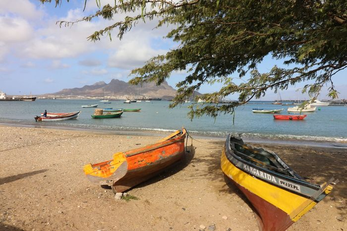 Water Tree Nautical Vessel Longtail Boat Sea Beach Moored Sand Sky Horizon Over Water Fishing Boat Boat
