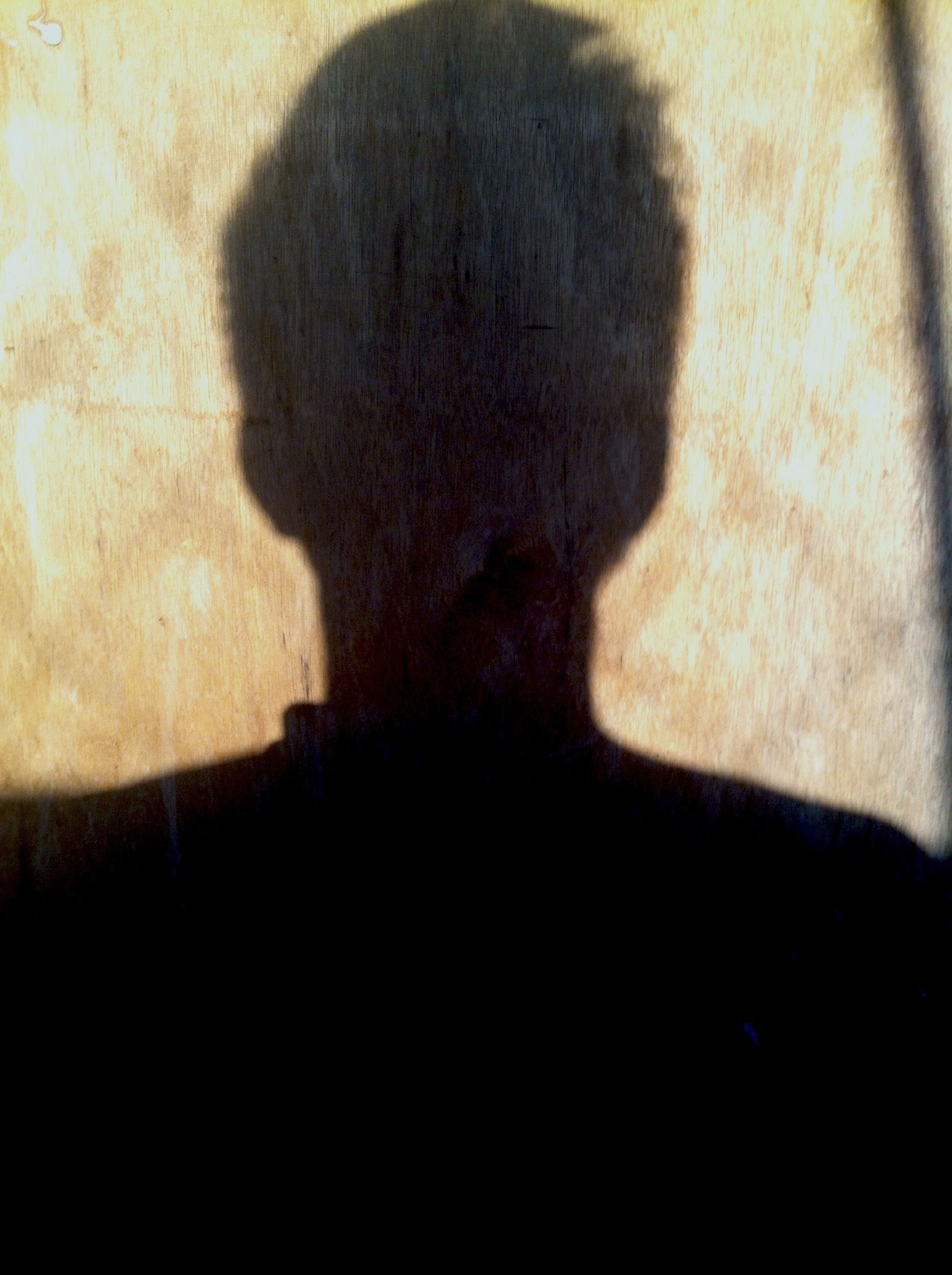 indoors, shadow, wall - building feature, silhouette, focus on shadow, human representation, wall, sunlight, no people, dark, home interior, art and craft, day, close-up, art, copy space, statue, built structure, creativity, mystery