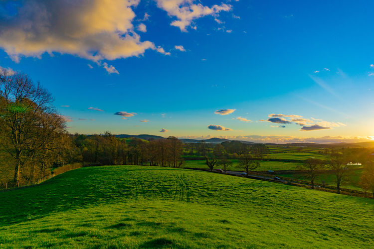 Nature landscape of green field in rural area in sunset with blue sky and clouds Sky Scenics - Nature Beauty In Nature Tranquil Scene Tranquility Cloud - Sky Green Color Plant Grass Landscape Environment Land Tree Field No People Nature Non-urban Scene Idyllic Sunset Growth Outdoors