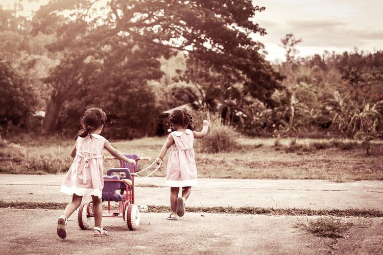 Siblings With Tricycle Walking In Park