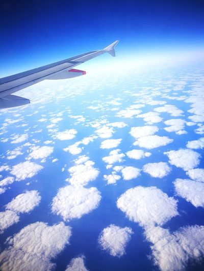 Airplane Airplane Wing Air Airplane Shot Sky And Clouds Sky Travel Travel Destinations Sheepclouds Tap Portugal TAP Portugal Airplane Airbus Atlantic Ocean Portugal Love Traveling Travel Photography Travelphotography Traveling Home Sky And Sea Eye4photography  EyeEm Best Shots Eyemphotography EyeEm Nature Lover
