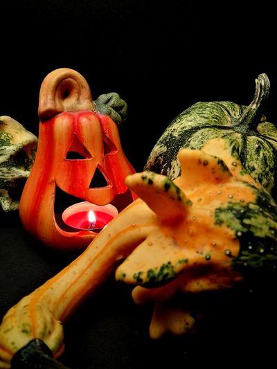Halloween time Pumpkin Freshness Black Background Close-up Vegetable Holidays Celeberating Fall October Day Jack O' Lantern Celebration Halloween Black Background Contrast
