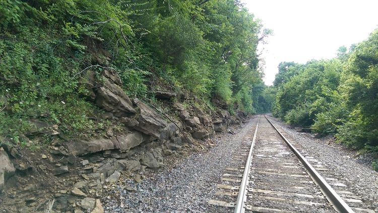 The Purist Rock Formation Manmade Mother Vs Nature Wrong Side Of The Tracks Leavin' On A Southern Train Vanishing Point Eye Am Nature Sunlight And Shadow Treescape