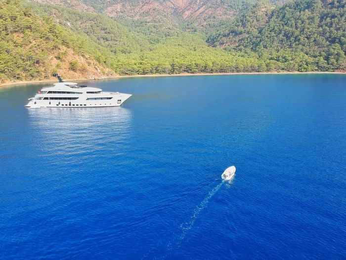 Drone Photography Water Nautical Vessel Tree Yacht Yachting Sea Sailing Blue Sky Landscape Speedboat Jet Boat Sailing Boat Mast Wake Moored Wake - Water Sailboat Marina Sailing Ship Motorboat Port