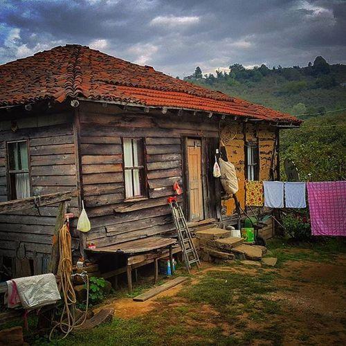 Bambaşka hayatlar... Dağevi Doğada Tuesday Instagood intagram açmabaşı foto kareler t yeşillik