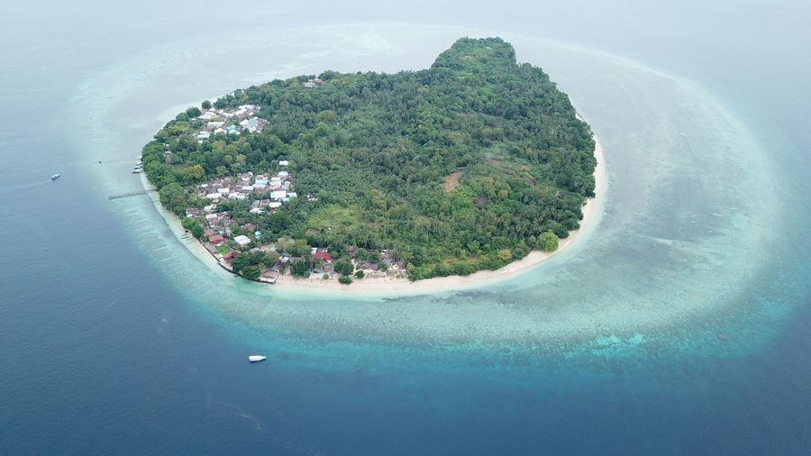 Aerial view of island on sea