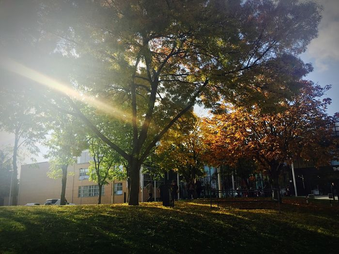 Capture The Moment autumn