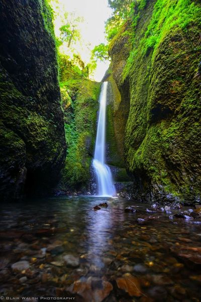 Oneontagorge Columbia River Gorge Oregon Pacific Northwest  Northwest Waterfall Photo Photography Photooftheday