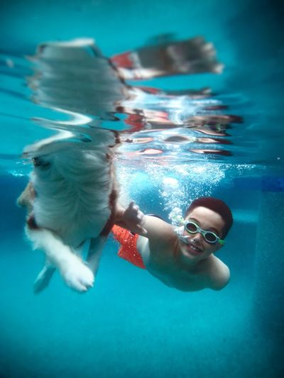 Portrait of smiling boy with dog swimming in pool
