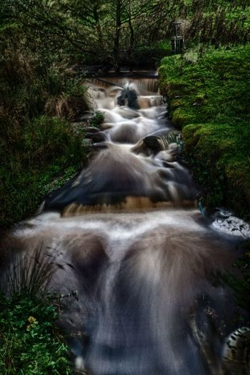 Beauty In Nature Blurred Motion Day Flowing Flowing Water Forest Growth Land Long Exposure Motion Nature No People Outdoors Plant Power In Nature Rainforest Scenics - Nature Stream - Flowing Water Tree Water Waterfall
